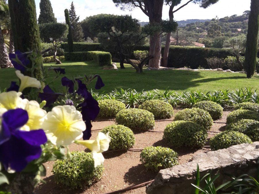 Поддръжка на градина Sent Tropez France