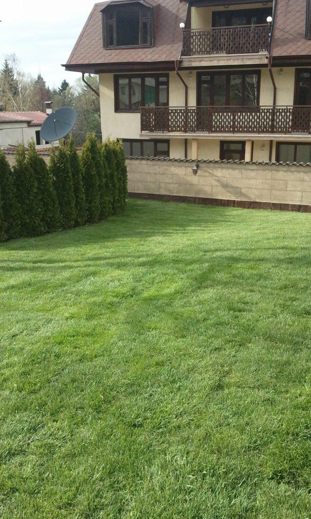 Озеленяване и поддръжка Green Dream